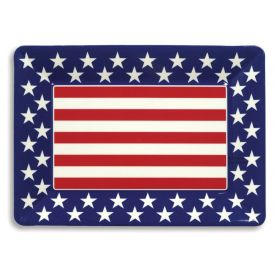 Patriotic Trays Plastic 14
