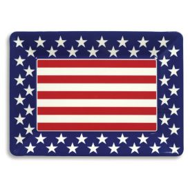 Patriotic Trays Plastic 16