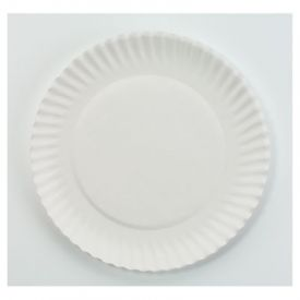 AJM Packaging Corporation Paper Plates, 6
