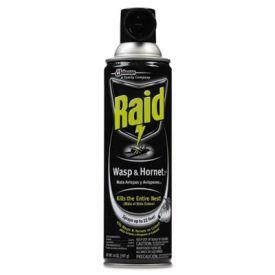 Raid® Wasp & Hornet Killer, 14-oz. Aerosol Can