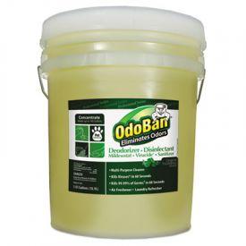 OdoBan®  Deodorizer Disinfectant, 5gal Pail, Eucalyptus Scent