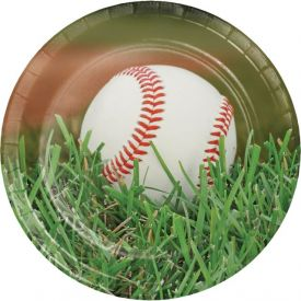 Sports Fanatic Baseball Paper Dinner Plates 9