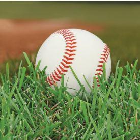 Sports Fanatic Baseball Beverage Napkins 2-Ply