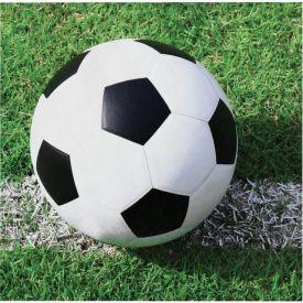 Sports Fanatic Soccer Beverage Napkins 2-Ply