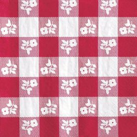 Red Gingham Beverage Napkins, 2-Ply