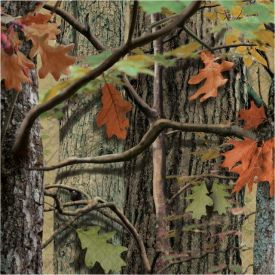 Hunting Camo Lunch Napkins, 2-Ply