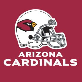 NFL Arizona Cardinals Lunch Napkins 2-Ply