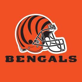 NFL Cincinnati Bengals Lunch Napkins, 2 ply