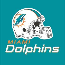 NFL Miami Dolphins Lunch Napkins, 2 ply