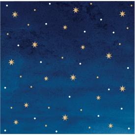 STARS AND GOLD FOIL BEVERAGE NAPKINS BY ELISE