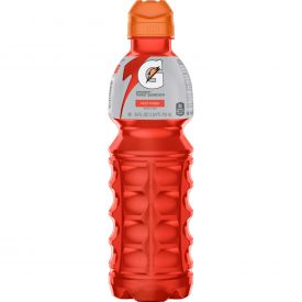 Gatorade Fruit Punch 24oz.